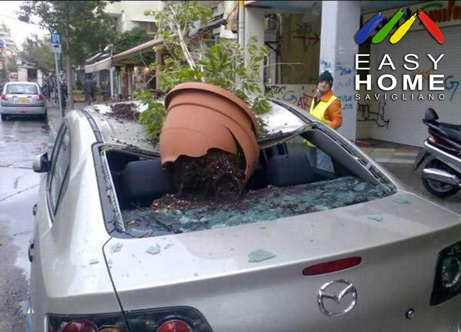 Vaso cade su automobile